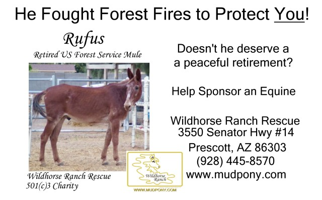 Buy 2 Bags of Senior Feed for a retired US Forest Service Equine