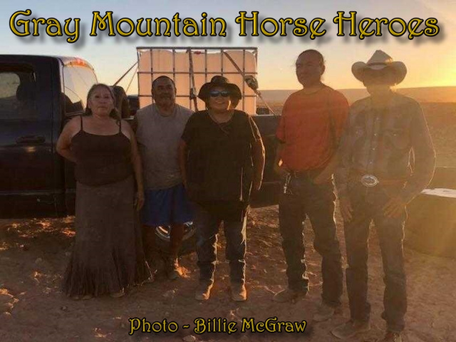 Gray Mountain Horse Heroes