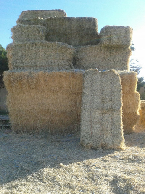 A Squeeze of Hay is a Big Stack of Hay