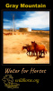 Water for Horses Gray Mountain